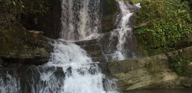 Typhoon Dolphin Splashes Guam, Hotel Biz Retreat & Backyard Waterfall Adventure