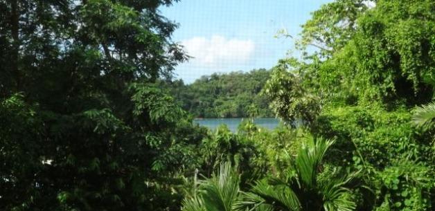 Rest and Rejuvenation in Palau Paradise!