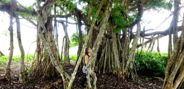 Fun in Nature & Creative Musings Through Photos